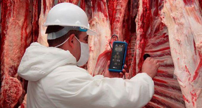 Cuatro frigoríficos fueron suspendidos para exportar carne a Chile