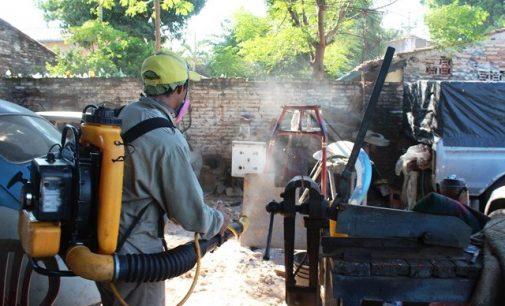 60 mil criaderos de aedes aegypti en Barrio Obrero