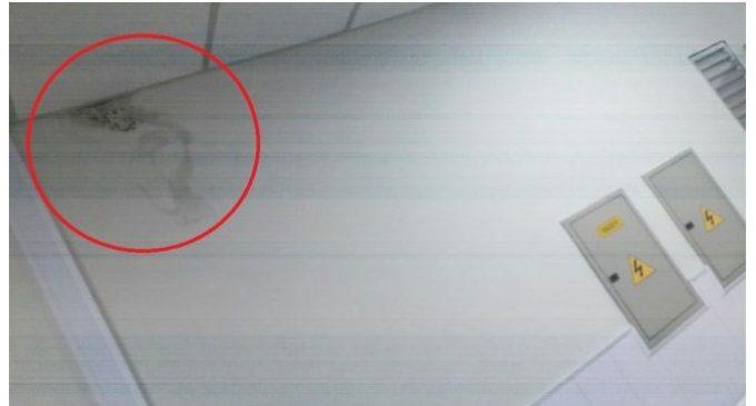 A dos meses de su inauguración, nueva terapia de IPS presenta filtraciones de agua en paredes