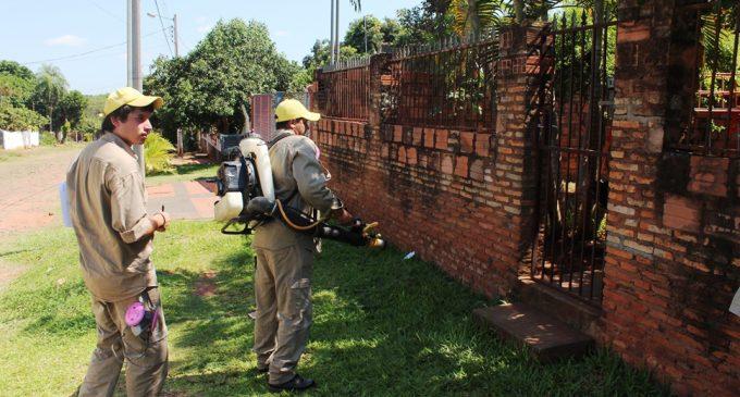 MEC planea fumigar zonas cercanas a instituciones educativas