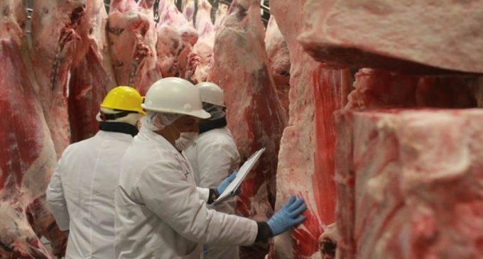 Frigoríficos exportan nuevamente a Chile