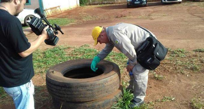Dengue: Leve descenso en Asunción