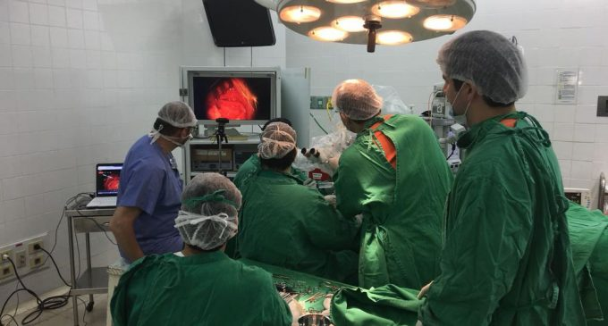 Cirugías de implante coclear, esperanzas para niños y adultos