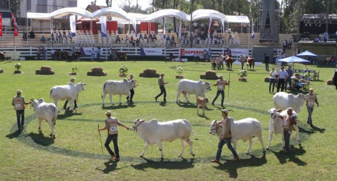 Negocios: Empresarios brasileros fueron mayoría en la Expo