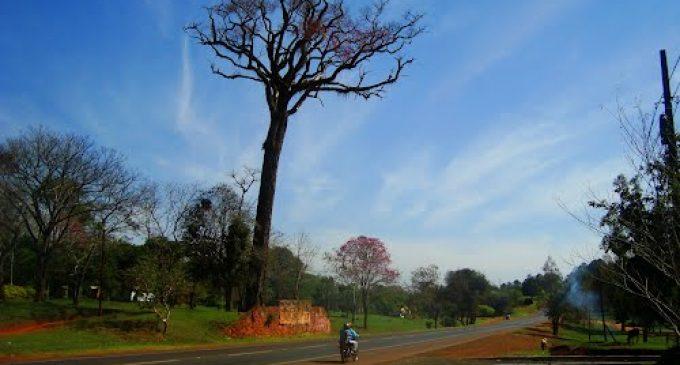 Conflicto por tierras en Alto Paraná: Dos municipios se disputan 8.000 hectáreas