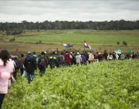 ARP denuncia ocupación de tierras