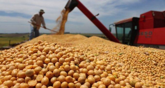 Gobierno evalúa reforma tributaria con enfoque en productores agrícolas y pecuarios