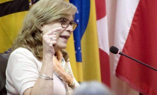 Ministro de inteligencia presentó querella contra Cristina Arrom