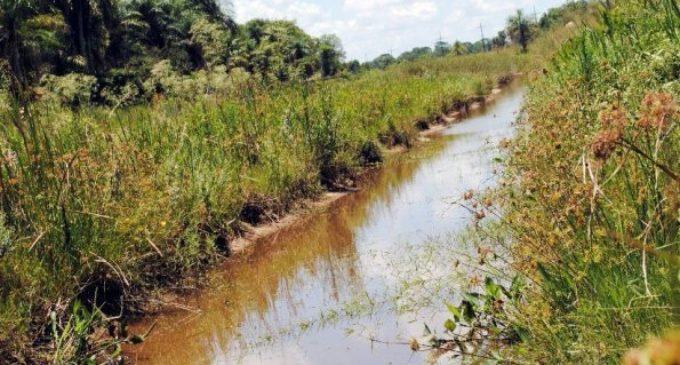 Secan humedales en Ayolas para sembrar arroz