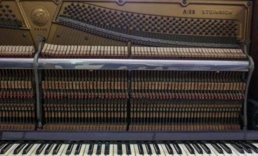 Japón donó instrumentos musicales al IMA