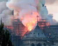 Incendio de Notre Dame: Rescataron algunas piezas históricas
