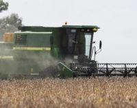 Reforma fiscal eliminaría devolución de crédito por IVA a agroexportadores
