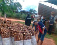 Productores de mandioca se manifiestan frente al MAG