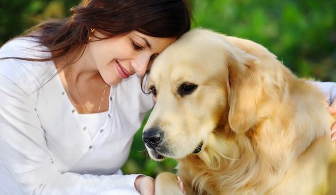 Según estudios: ¡Su perro sabe lo que usted siente!