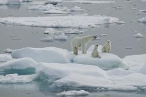 hielo-Groenlandia-se-derrite-3_0