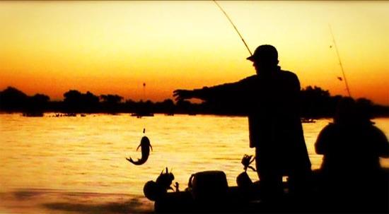 Veda pesquera regirá desde el lunes 2 de noviembre en todo el territorio nacional