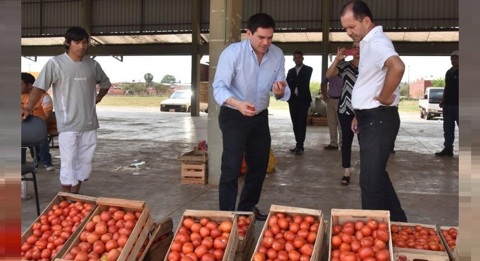 MAG asegura haber cortado importación de tomates