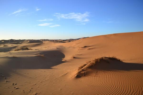 Culpan a la acción humana por el surgimiento del Sáhara