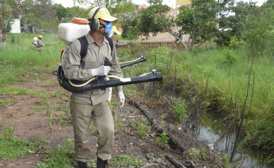 Disponen intervención del SENEPA por millonarias perdidas en insecticidas