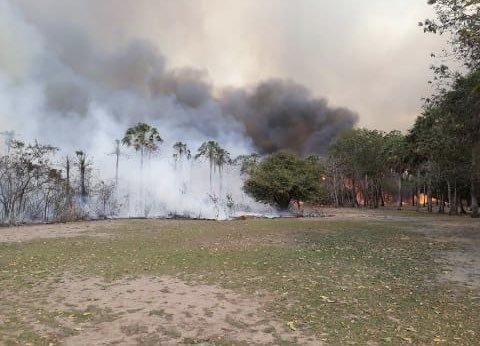 70% de reserva en el Pantanal fue arrasado por incendio