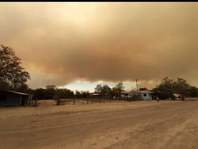 Desde la ARP preocupados por los incendios presuntamente provocados que buscan que hay crisis ambiental