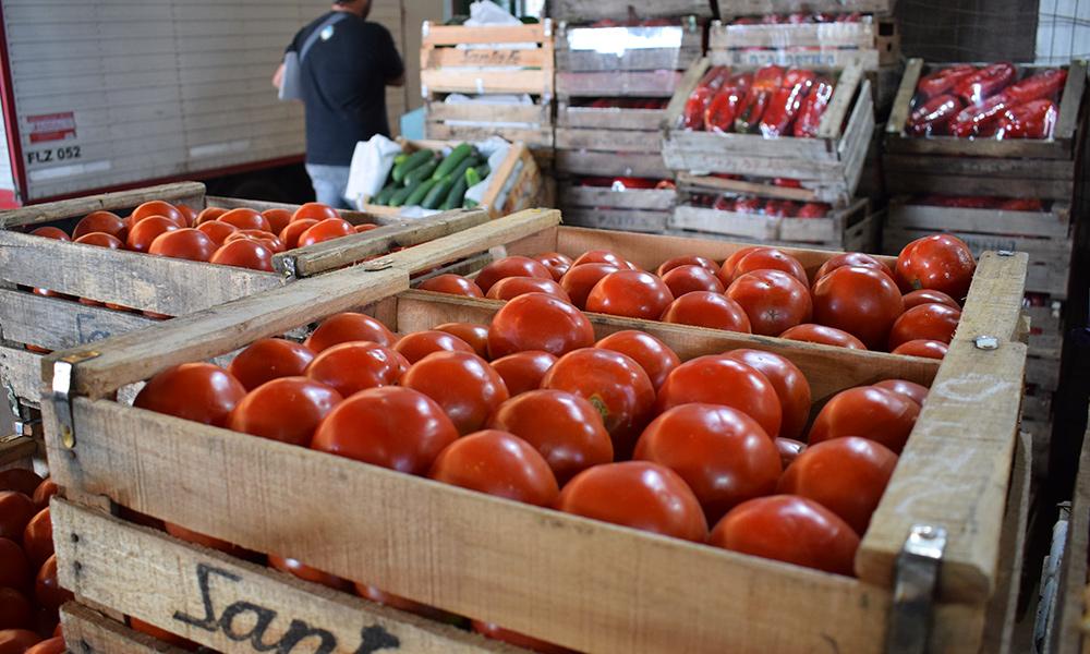 Crisis política causó caída estrepitosa de precios internacionales de productos, según Coordinadora Agrícola