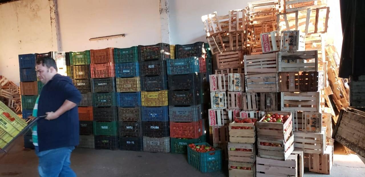 Incautaron más de 600 cajas de tomates ingresados de contrabando