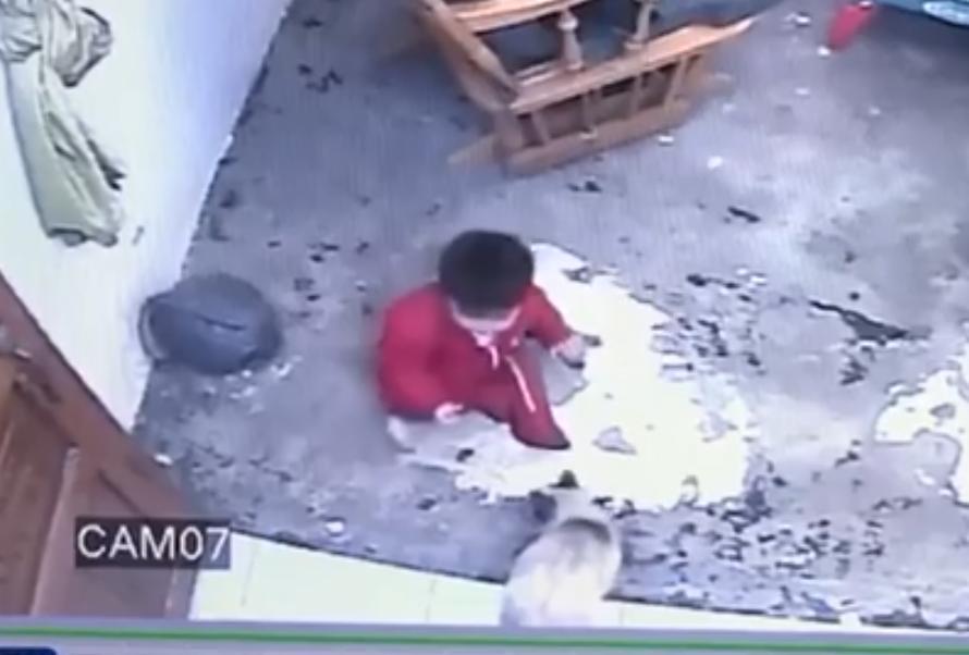 """""""Gatúbela"""" salva a bebé de caer por las escaleras"""