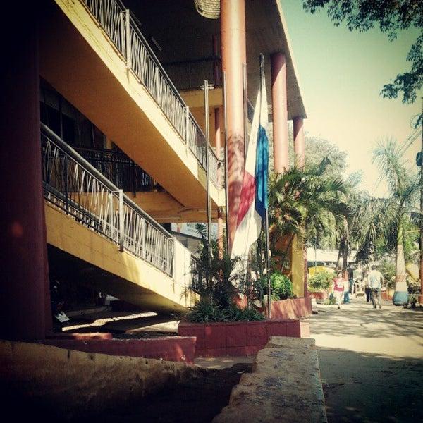 Fernando de la Mora quiere tener control sobre rutas dentro del municipio