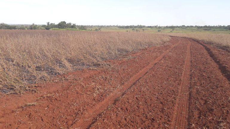 Comisión Verdad y Justicia: Millones de hectáreas de tierras malhabidas descubiertas y ninguna recuperada